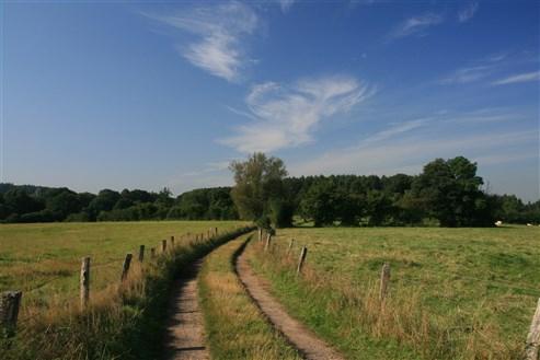 Landschaft Hauset