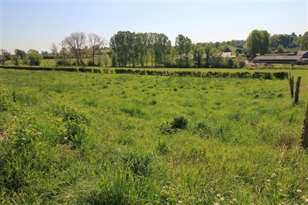 Lontzen: Neue Parzellierung in voller Südlage (Los 11) - 4710 Lontzen, Belgien
