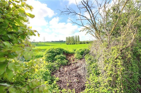 Terrain en Zone d'Habitat à Caractère Rural - LONTZEN