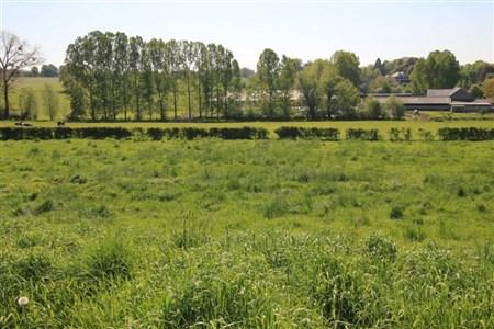 Lontzen: Neue Parzellierung in voller Südlage - 4710 LONTZEN, Belgien