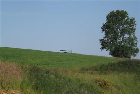 Bauland mit Blick in die wunderbar grüne Natur in perfekter Lage.