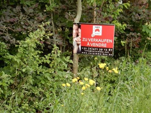 Optimal für geräumige, freistehende Villa, Doppelhaus oder überschaubares Mehrfamilienhaus in unmittelbarer Grenznähe B/D