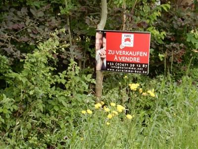 Idéal pour une villa individuelle spacieuses, maisons doubles ou immeubl à appartements à proximité immédiate de la frontière germano/belge - 4730 Raeren, Belgique