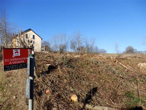 Schönes Baugrundstück für ein oder zwei Einfamilienhäuser  in grenznähe zu Luxembourg!
