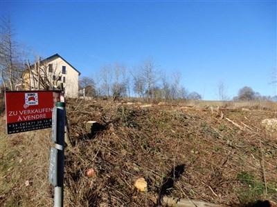 Schönes Baugrundstück für ein oder zwei Einfamilienhäuser  in grenznähe zu Luxembourg! - 4791  Burg-Reuland, Belgien