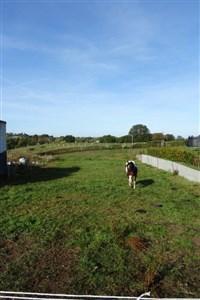 Wunderschönes vollerschlossenes Baugrundstück ohne Bauverpflichtung mit unverbaubarem Weitblick auf Weidelandschaft. - 4730 Raeren, Belgique