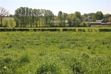 Lontzen: Neue Parzellierung in voller Südlage (Los 7) - 4710 Lontzen, Belgien
