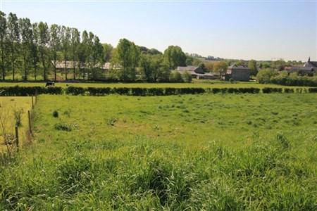 OPTION! Lontzen: Neue Parzellierung in voller Südlage (Los 6) - 4710 Lontzen, Belgien