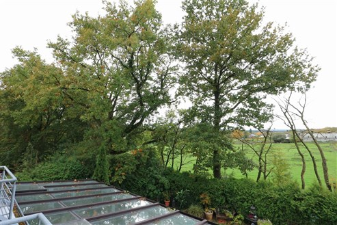 Betriebswohnhaus am Rande des Gewerbegebiets Roetgens  mit Ausblick auf die belgischen Naurschutzwiesen