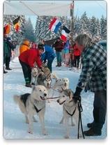 Ostbelgien - 29. Internationales Schlittenhunderennen