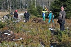 Ostbelgien - Naturpflege im Naturschutzgebiet Recht