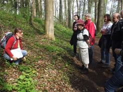 Ostbelgien - Vom alten Wissen und Nutzen unserer Bäume