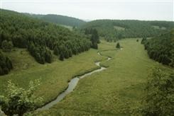 Ostbelgien - Flora und Fauna im Schwalmbachtal