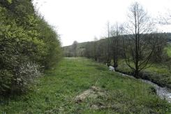 Ostbelgien - Naturpflege im NSG Großweberbach