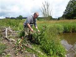 Ostbelgien - Naturpflege mit Natagora/BNVS im Naturschutzgebiet der Holzwarche